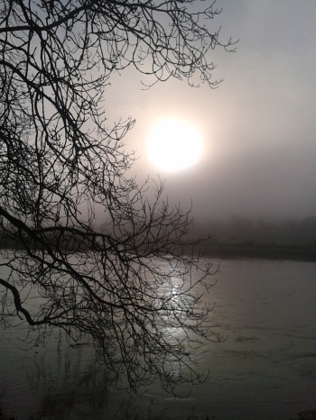 mist early morning river mist sun glow grey bright