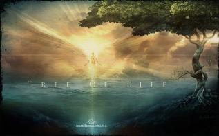 8. Tree of Life
