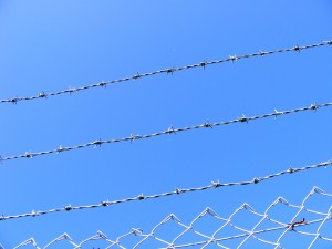 Barbed_Wire_FSF_Fenced_TheLastKrystallos