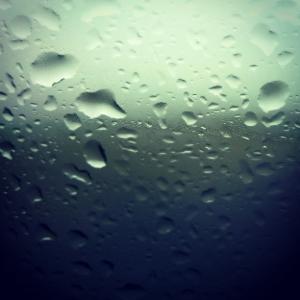 Rain © Lisa Shambrook