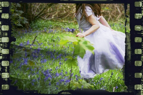 beneath the rainbow, lisa shambrook, bluebells, the last krystallos,