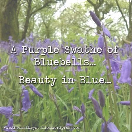 a purple swathe of bluebells, purple swathe, beauty in blue, the last krystallos,