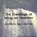 the-blessings-of-being-an-observer-the-last-krystallos