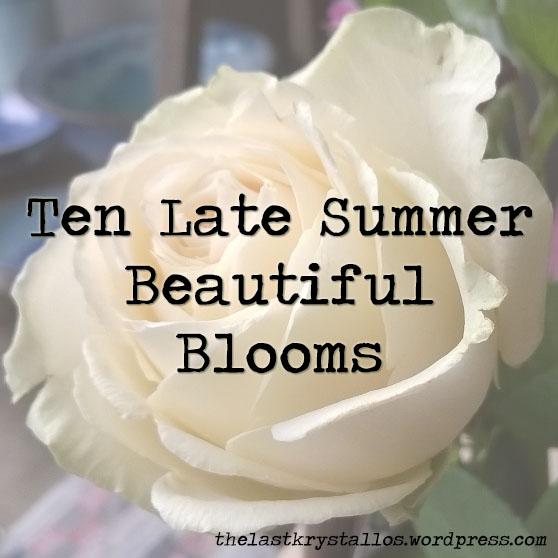 10 late summer flowers beautiful blooms the last krystallos ten late summer beautiful blooms title 090915 mightylinksfo