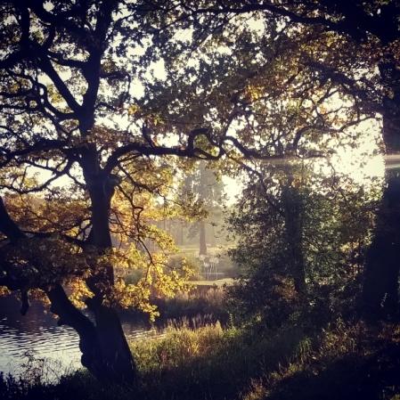 trentham gardens,