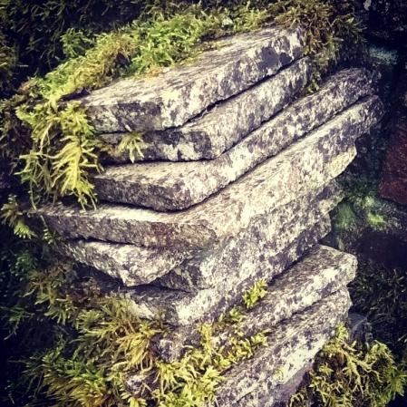 silence-moss-stone-the-last-krystallos