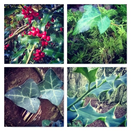 holly and ivy, the holly and the ivy, Ten Winter Wonders of Nature, the last krystallos,