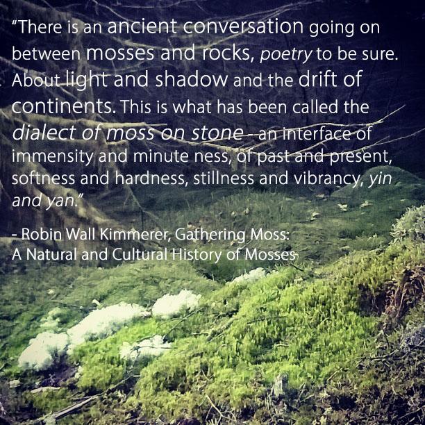 Ancient conversation moses and rocks - Robin Wall Kimmerer - Gathering Moss | The Last Krystallos