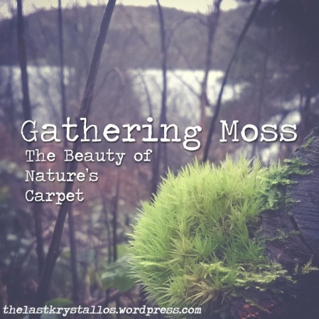 Gathering Moss - The Last Krystallos