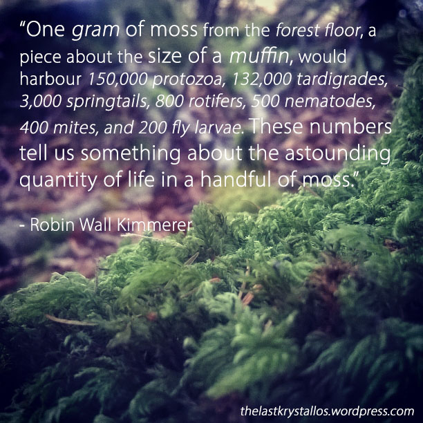 One gram of moss contains... - Robin Wall Kimmerer | The Last Krystallos