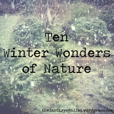 Ten Winter Wonders of Nature | The Last Krystallos