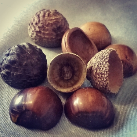 talisman, totem and stim - acorn cups and hazelnuts - The Last Krystallos