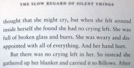 the-slow-regard-of-silent-thing-self-harm-the-last-krystallos