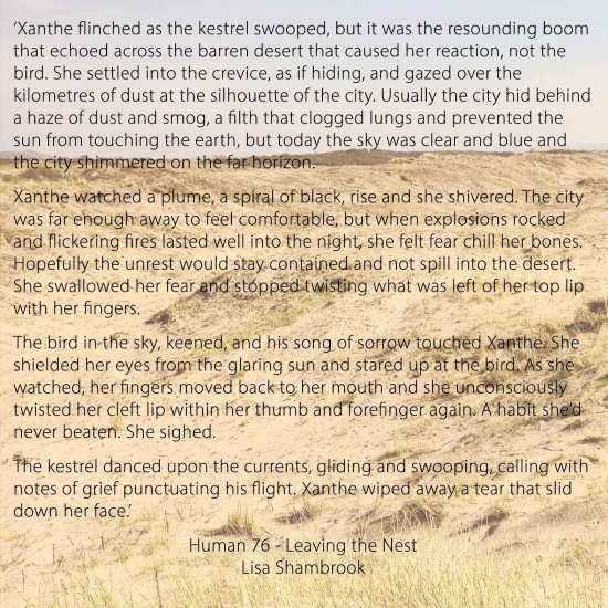 Snippet of 'Leaving the Nest' by Lisa Shambrook - Human 76