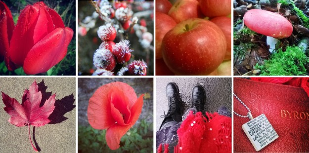 Scarlet like remembrance poppies… and tulips, and berries, apples, and toadstools, and leaves, poppies, scarves, and books…