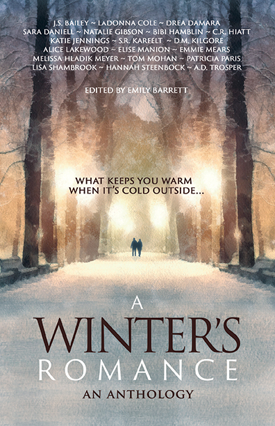 12-a-winters-romance-bhc-press