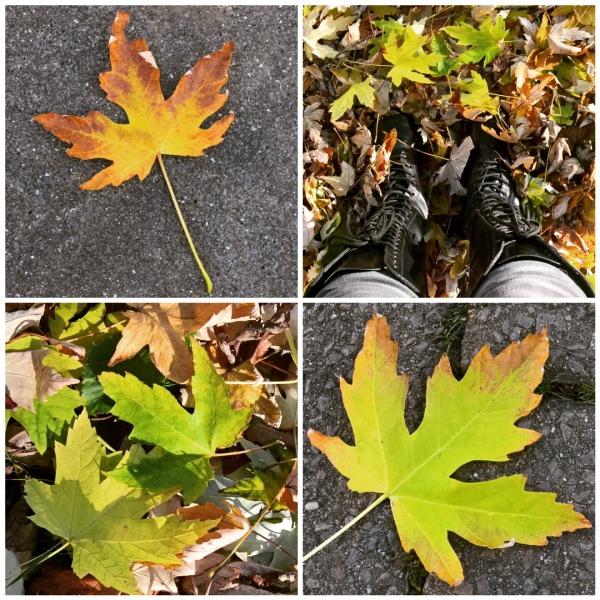 green-yellow-autumn-leaves-the-last-krystallos