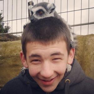17-2013-amazon-zoo-dan-lemur-instagram-april-2013