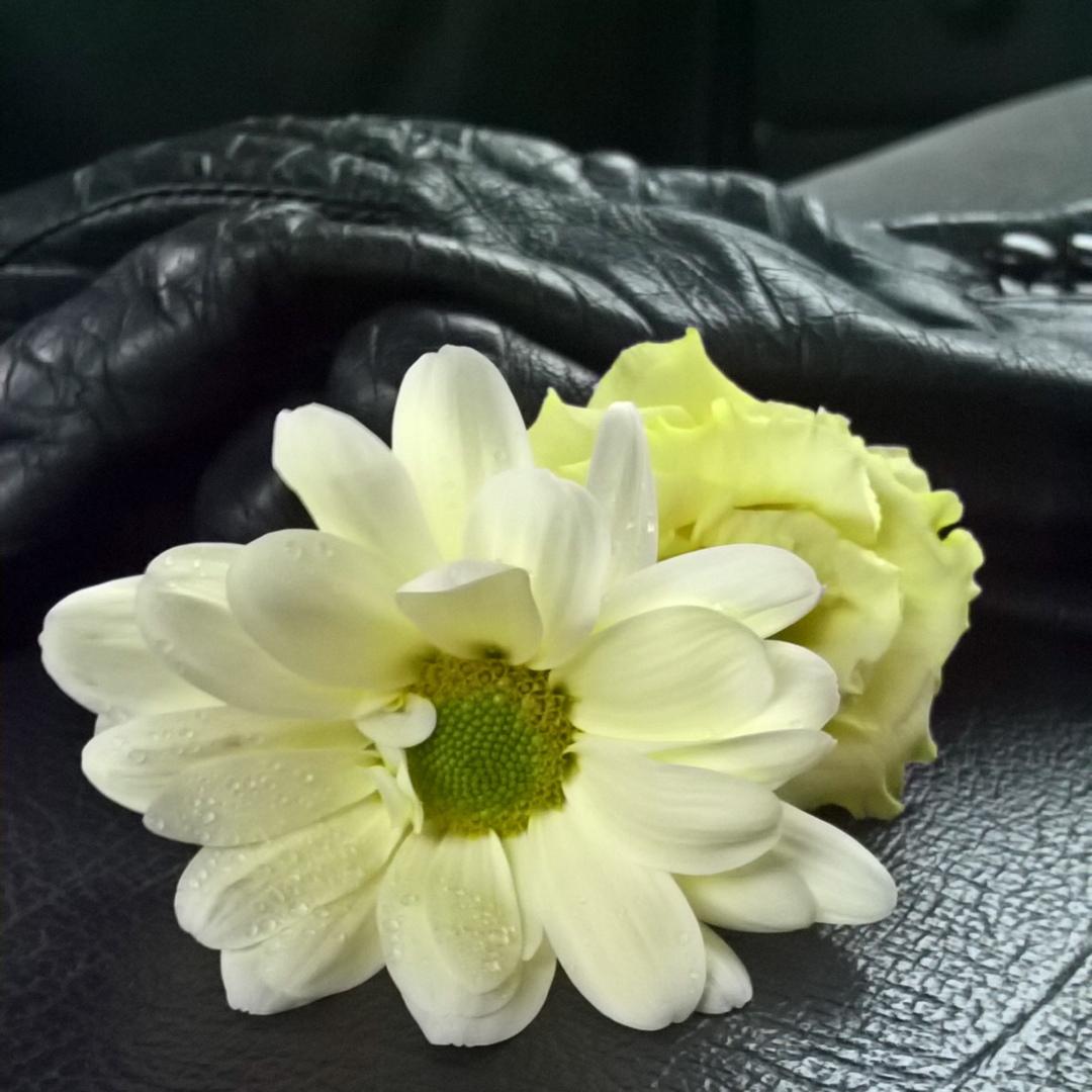gloves-and-funeral-flowers-the-last-krystallos