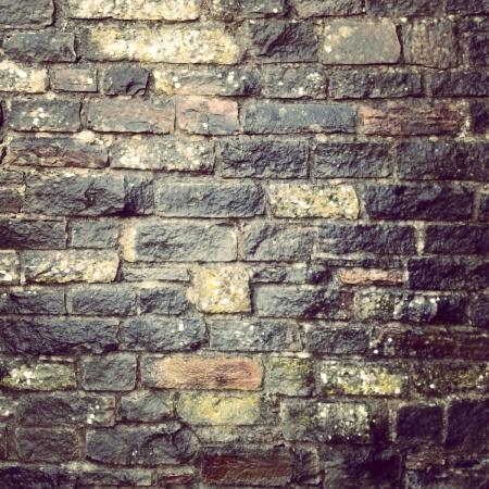 brick-wall-thelastkrystallos-lisa-shambrook