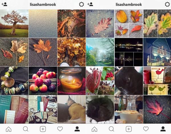 instagram-autumn-lisa-shambrook-the-last-krystallos
