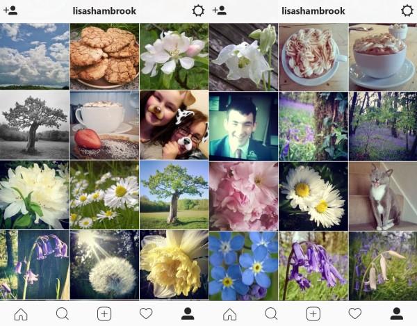 instagram-spring-lisa-shambrook-the-last-krystallos
