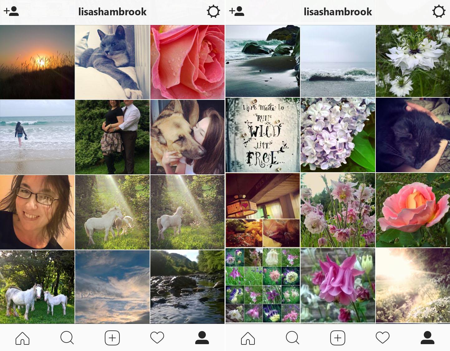 instagram-summer-lisa-shambrook-the-last-krystallos