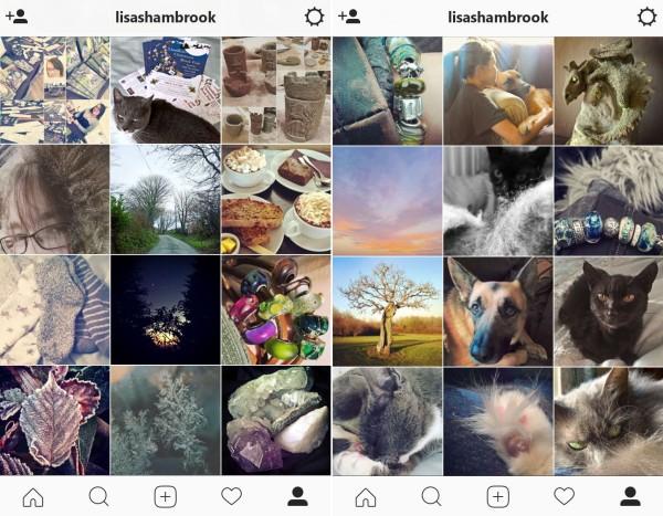 instagram-winter-lisa-shambrook-the-last-krystallos
