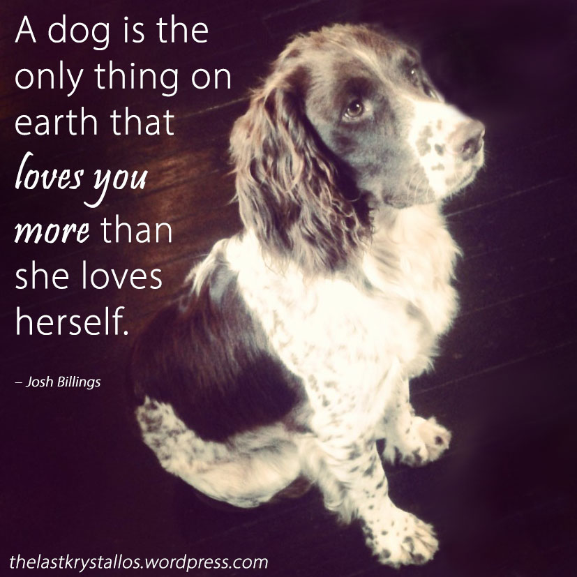 A dog is the only thing on earth that loves you more than she loves herself – Josh Billings - The Last Krystallos