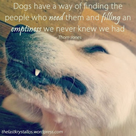 Dogs have a way of finding people who need them - Thom Jones - The Last Krystallos