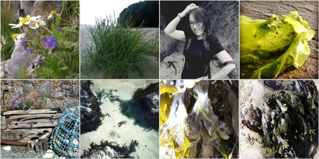 Flora-and-Seaweed-The-Last-Krystallos