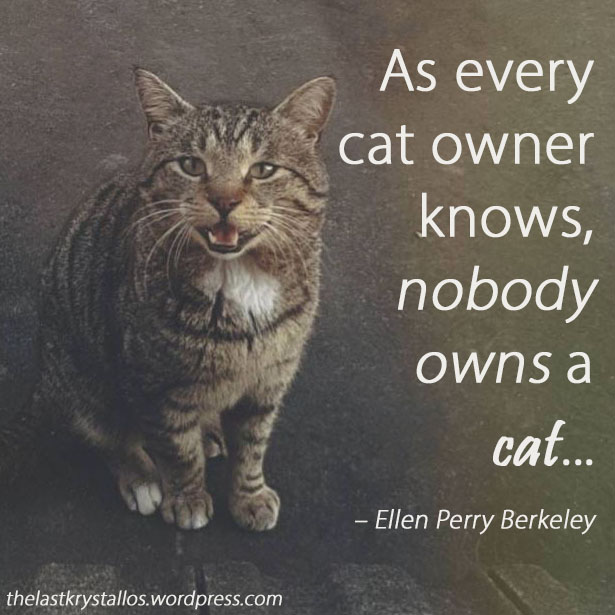 As every cat owner knows, nobody owns a cat - Ellen Perry Berkeley - The Last Krystallos - Photo Bekah Shambrook