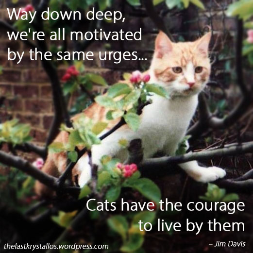 Cats have the courage to live them - Jim Davis - The Last Krystallos