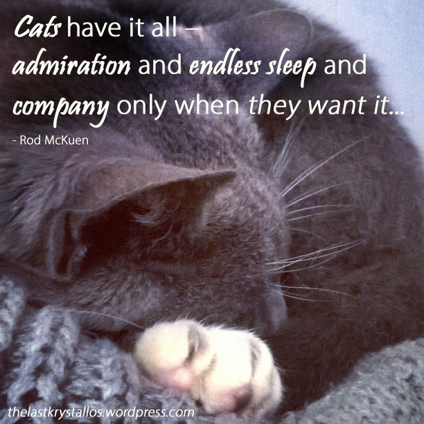 Cats have it all – admiration and endless sleep and company only when they want it - Rod McKuen - The Last Krystallos