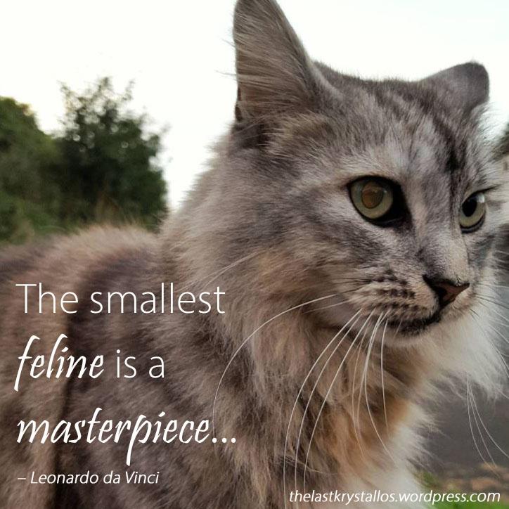 The smallest feline is a masterpiece - Leonardo da Vinci - The Last Krystallos - Photo Bekah Shambrook