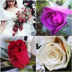 Wedding-Jacaranda-Garden-Valentine-Funeral-The-Last-Krystallos