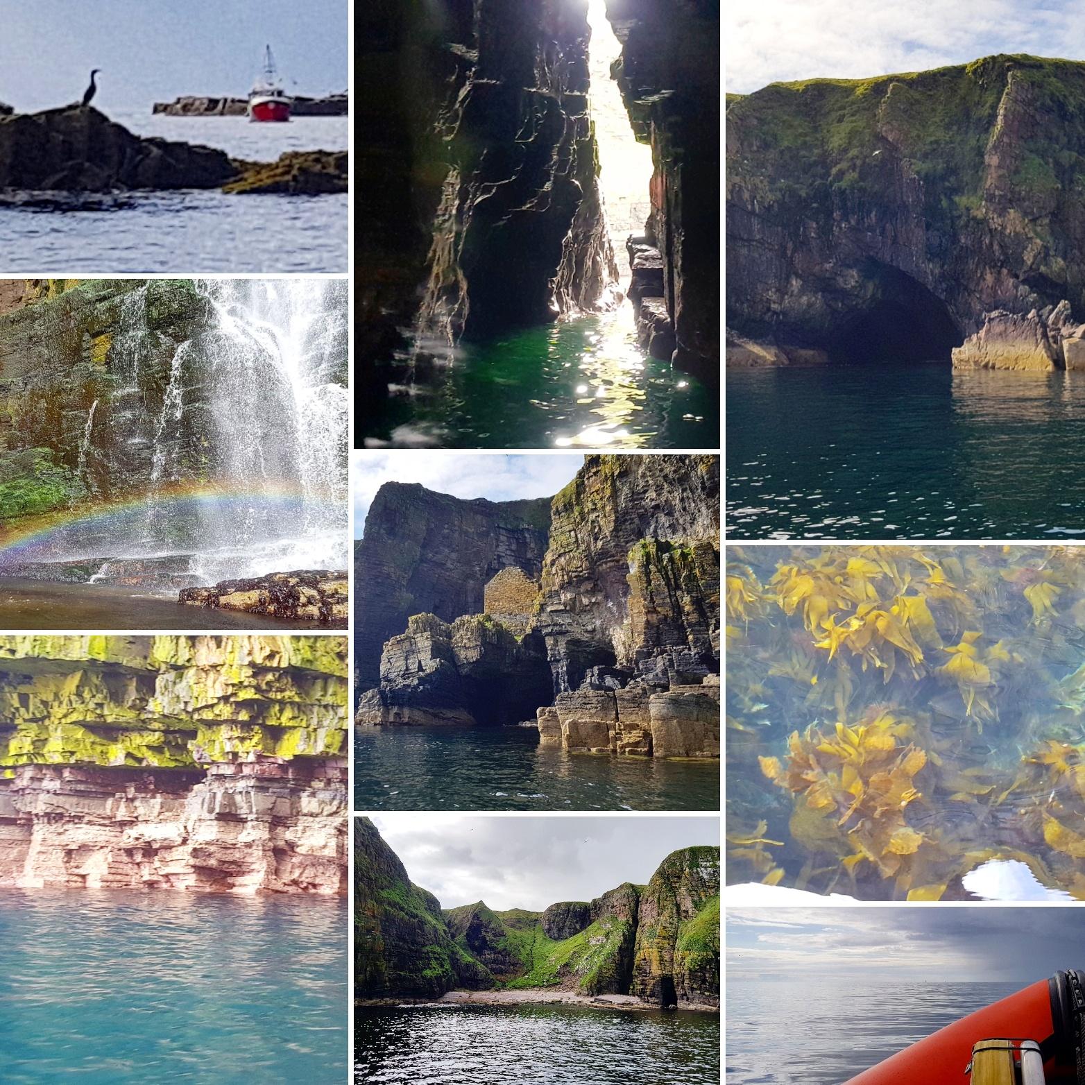 Caithness Seacoast Wick Coast - Fulmars and Scarfies and Seal - The Last Krystallos
