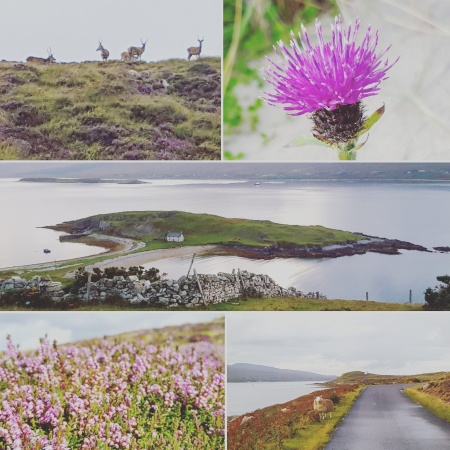 Deer - Thistle - Loch Eriboll - Heather - Sheep - The Last Krystallos