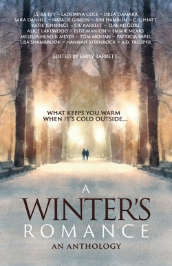 A Winter's Romance BHC Press