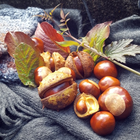 Horse Chestnuts - Conkers - Be Part of Autumn - The Last Krystallos