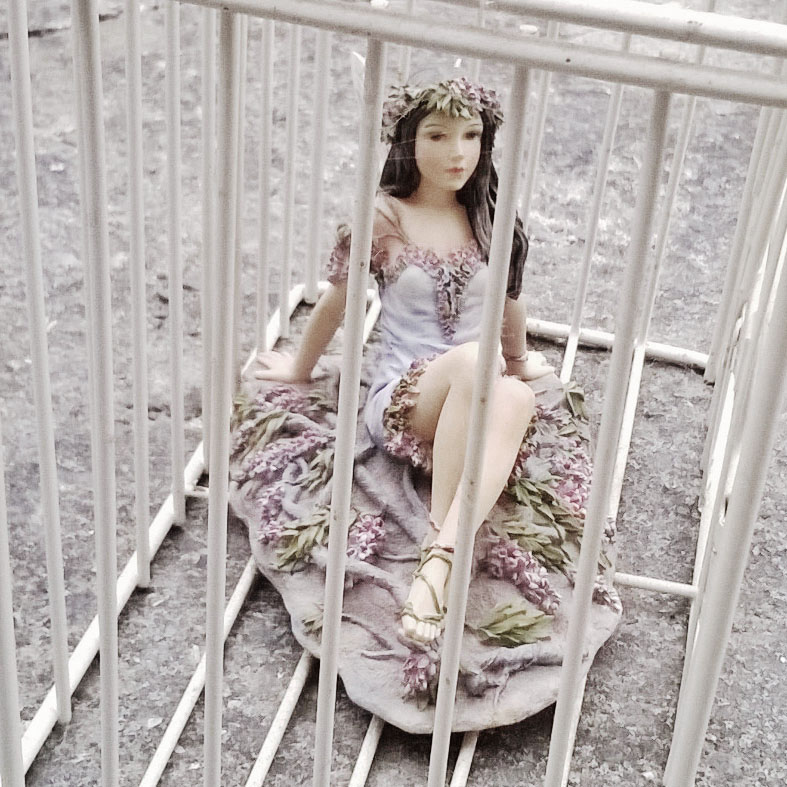 a fairy trapped within a cage