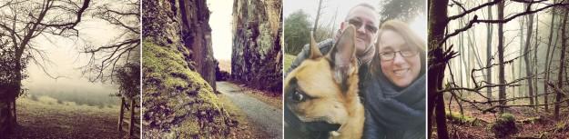 Misty Meadow - Pen y Bont Elan Valley - Local Dog Walking - Brechfa Forest - The Last Krystallos