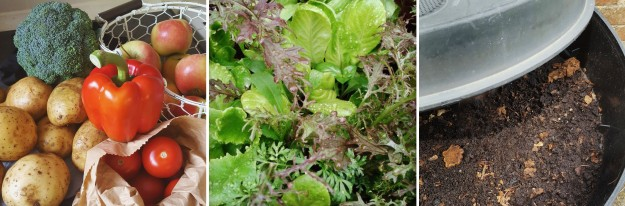 Fruit and Veg from Green Grocer - Grow Salad - Compost Wormery - the last krystallos