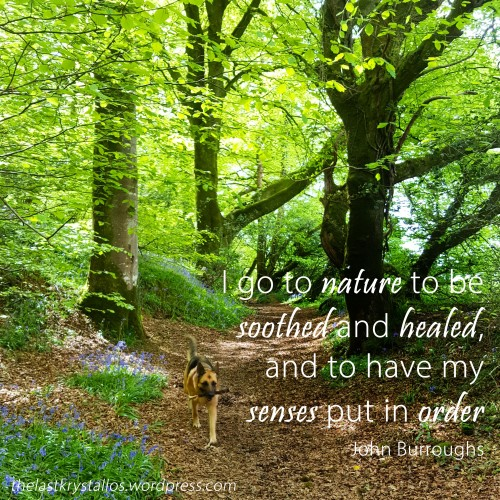 I go to nature to be soothed and healed, and to have my senses put in order - John Burroughs - The Last Krystallos