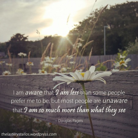 I am so much more than what they see - Douglas Pagels quote - The Last Krystallos