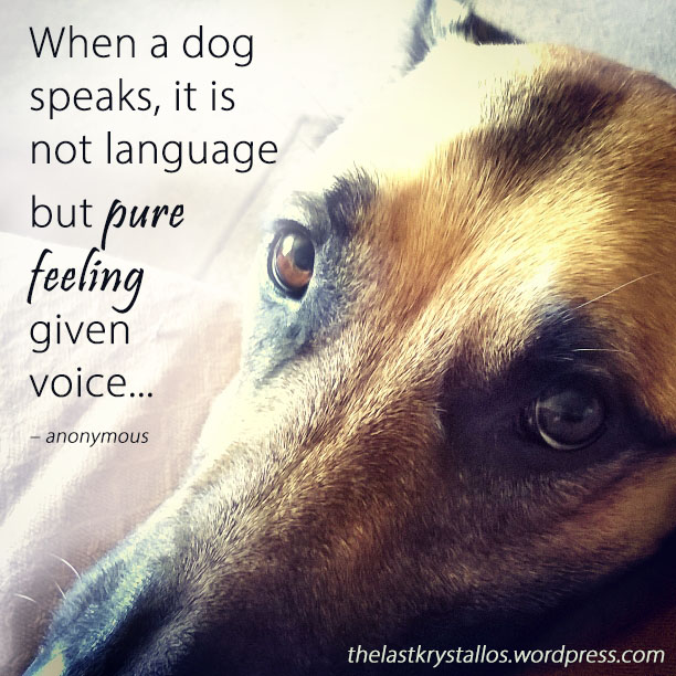 When a dog speaks, it is not language but pure feeling given voice – anonymous - The Last Krystallos