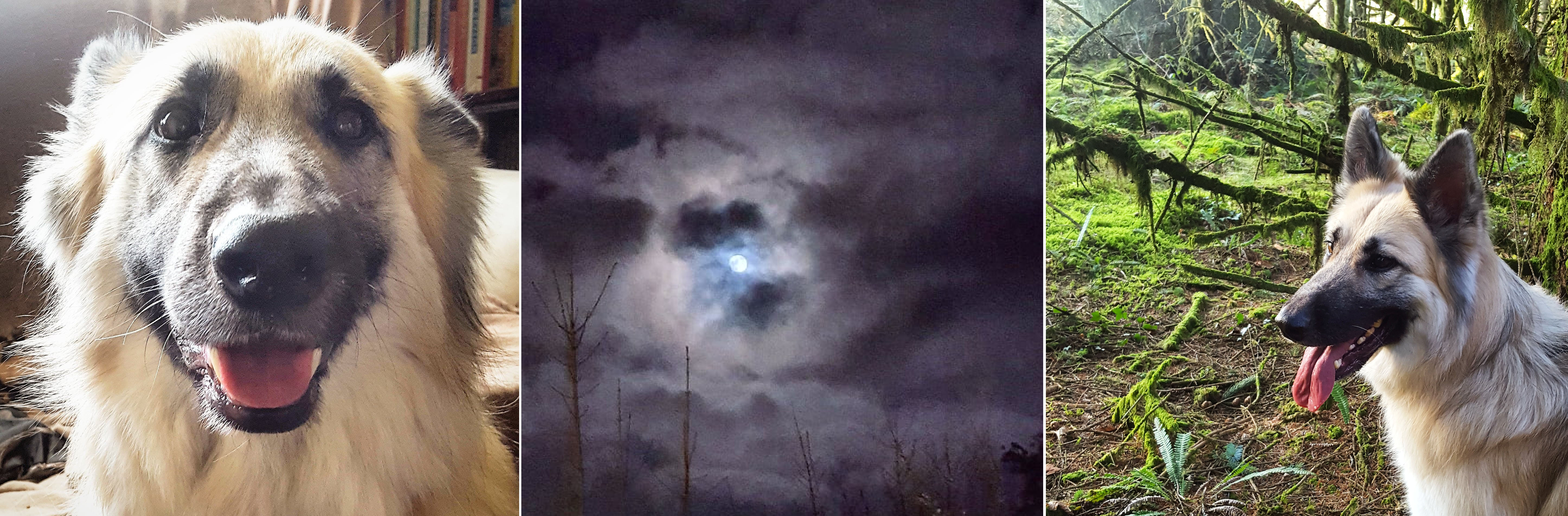 Kira - Snow Moon - Kira - The Last Krystallos