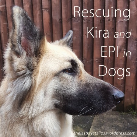 Rescuing Kira and EPI in Dogs - The Last Krystallos