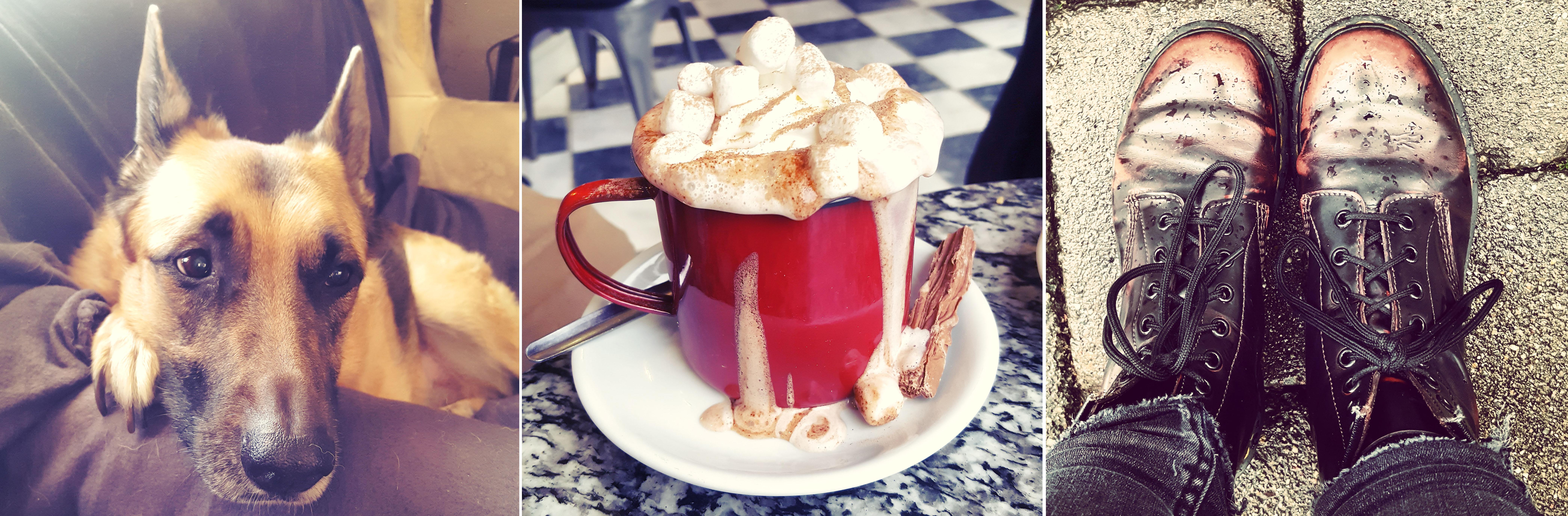 Roxy - Hot Chocolate - Dr Martens - December - The Last Krystallos