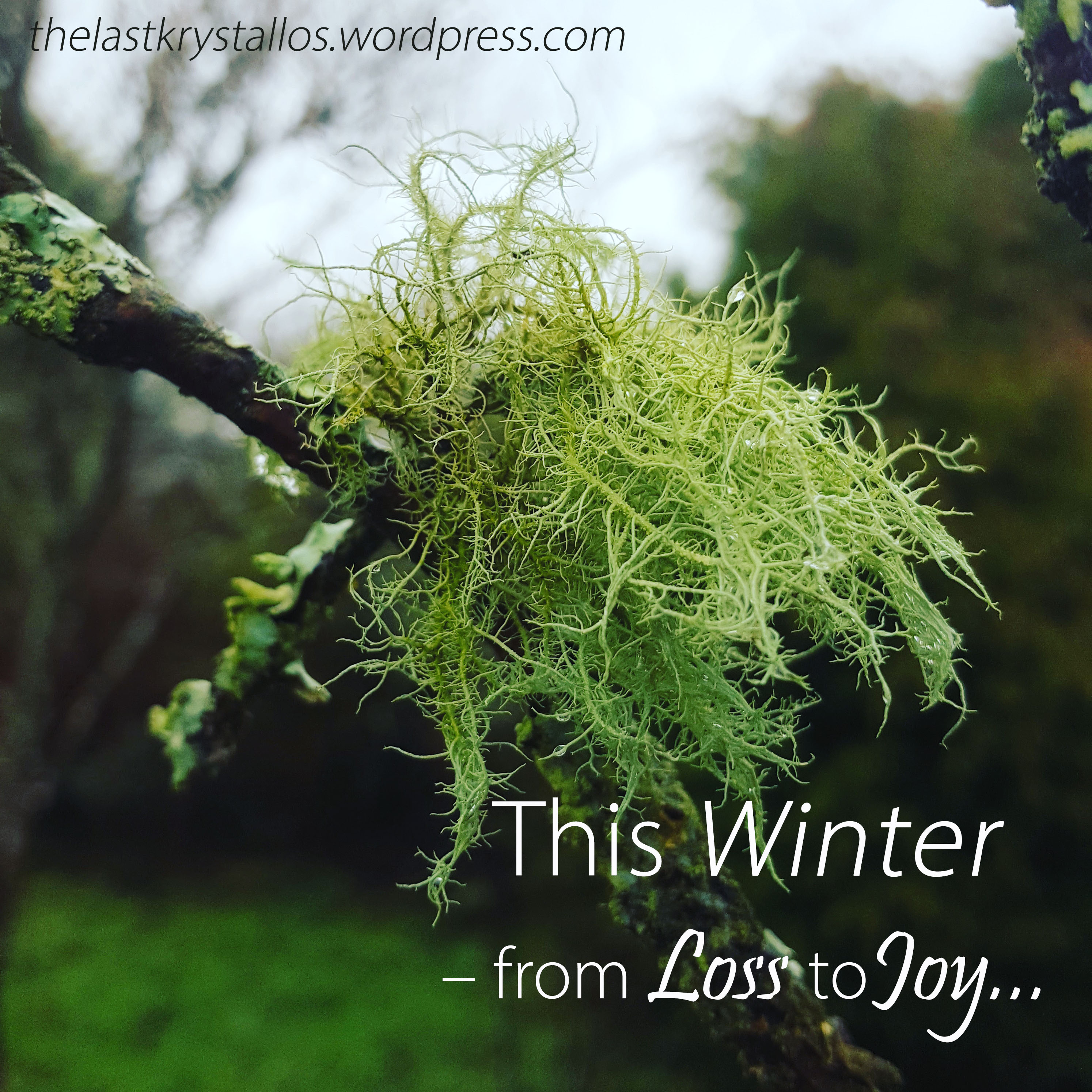 This Winter - from Loss to Joy... - The Last Krystallos